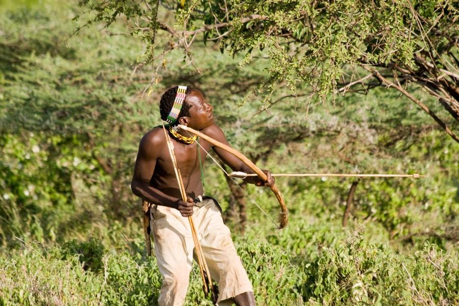 Que faire en Tanzanie : les meilleures activités